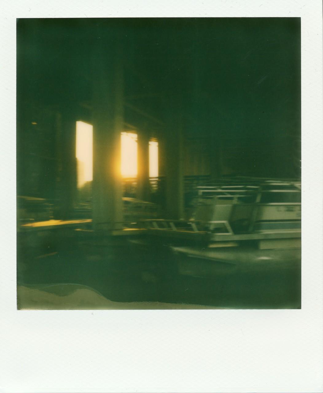 Polaroid Web_0010