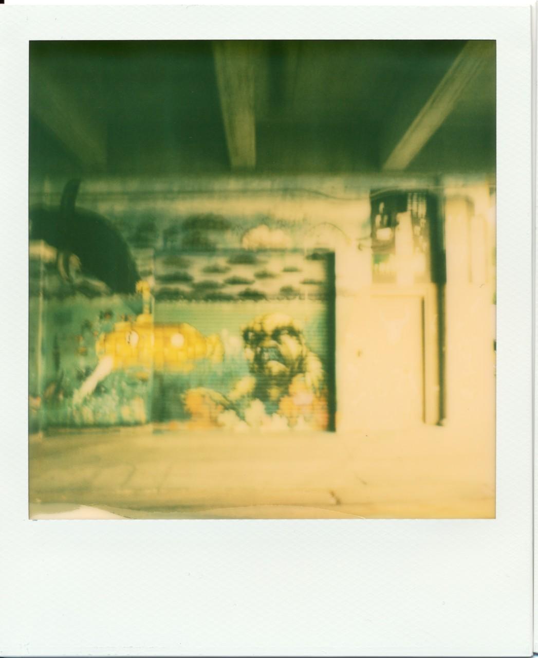 Polaroid Web_0013