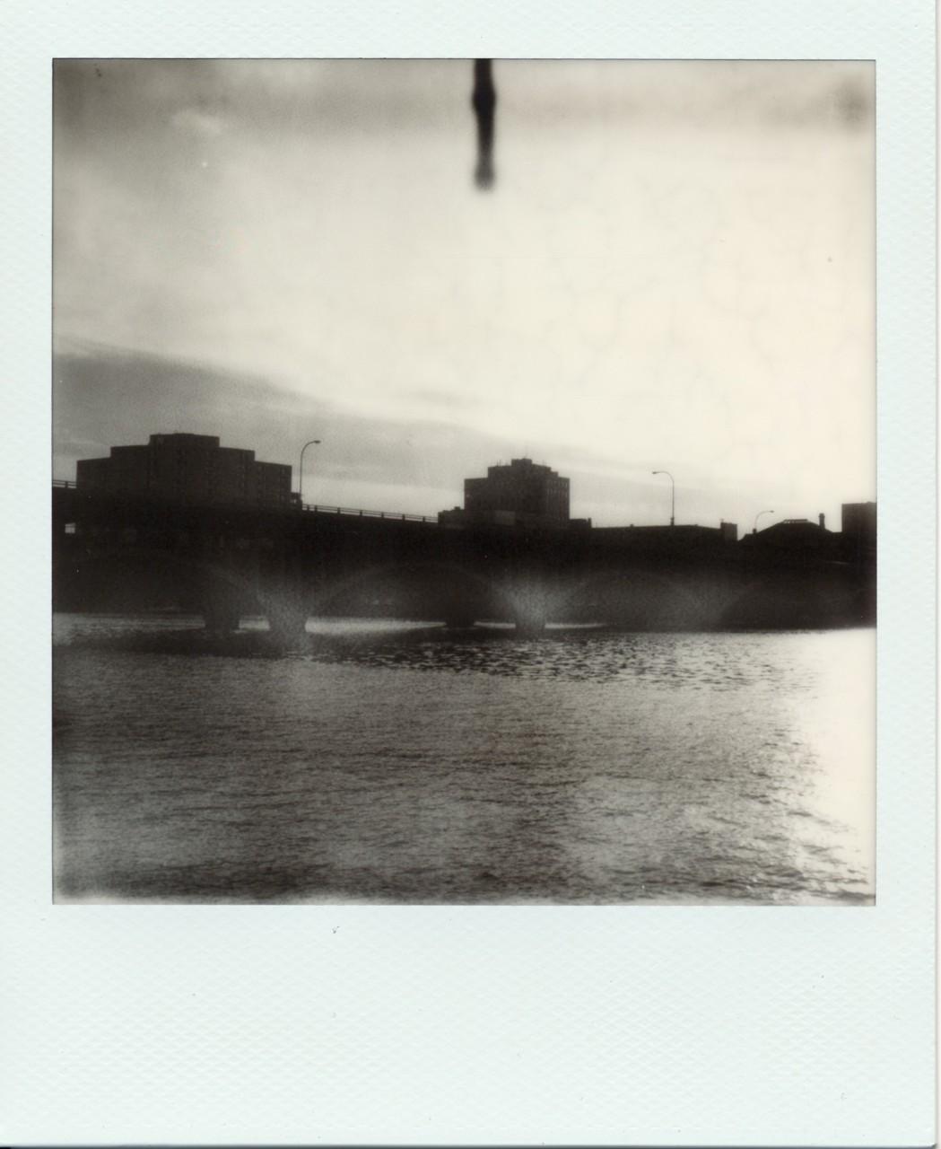 Polaroid Web_0014