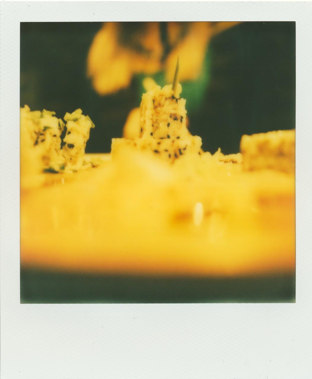 Polaroid Web_0023