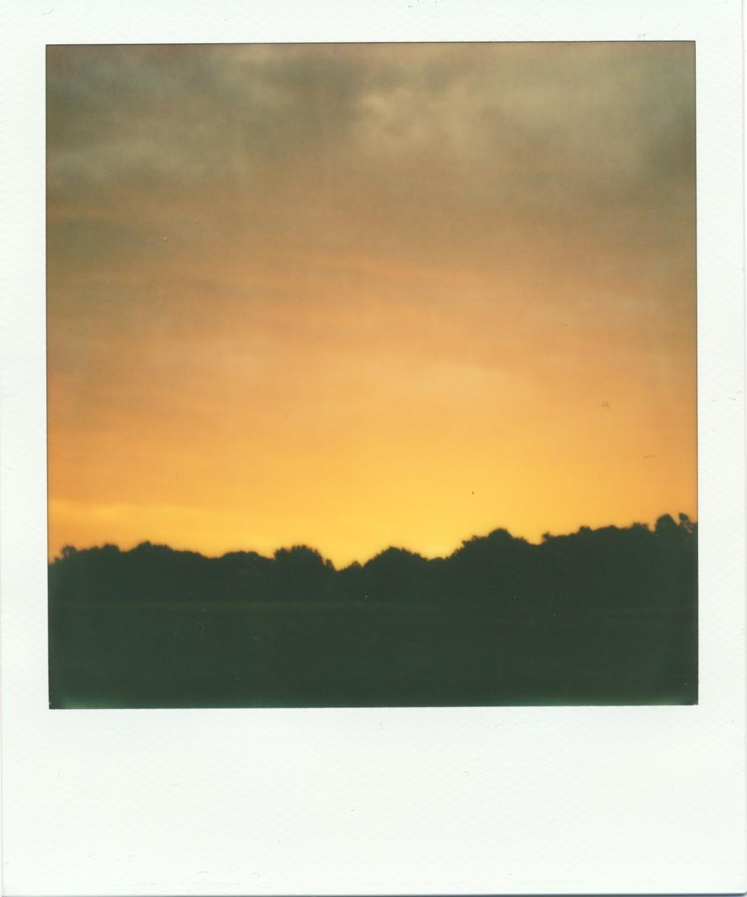 Polaroid Web_0043