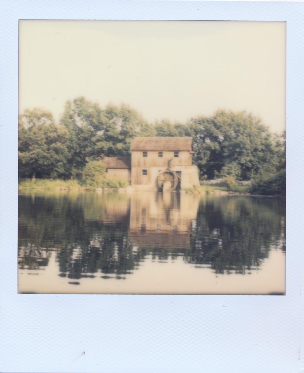 Polaroid Web_0054