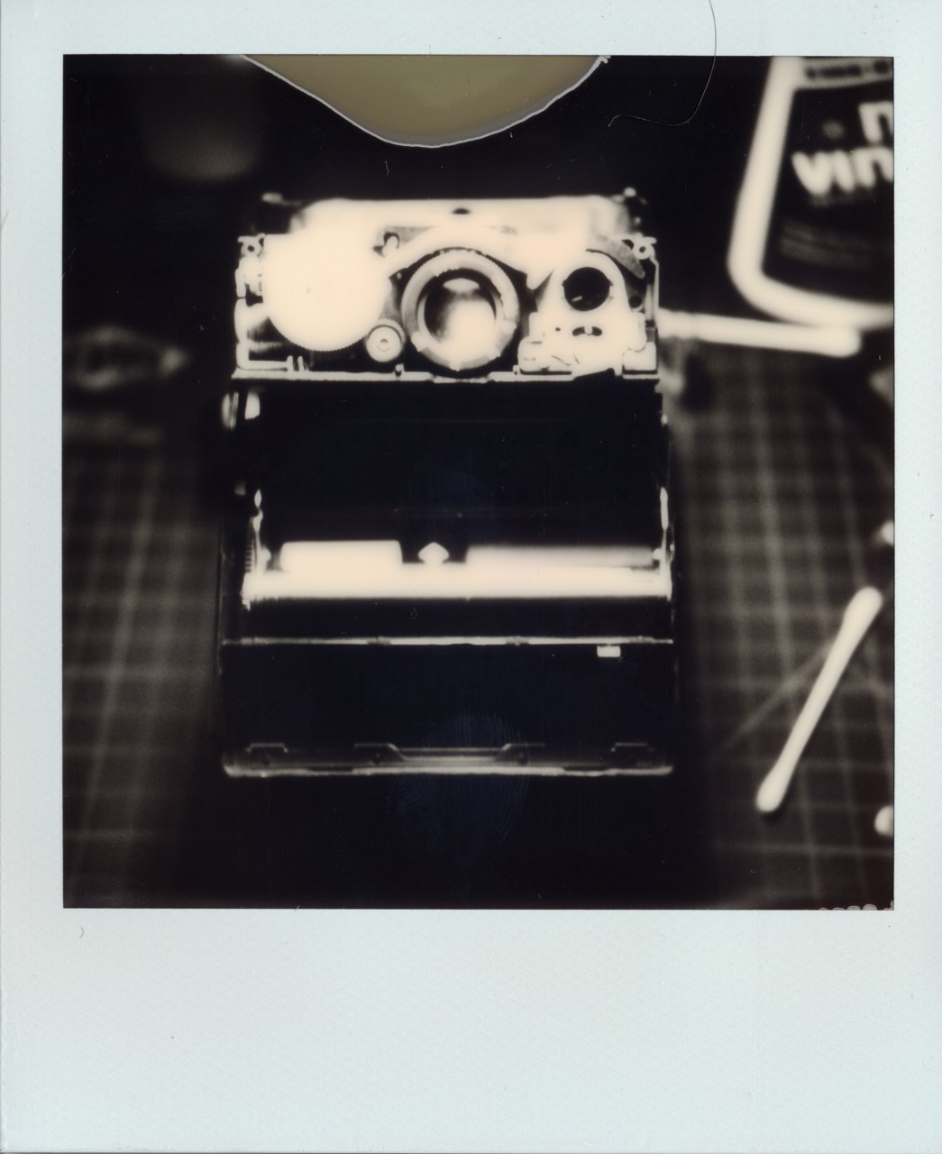 Polaroid Web_0098